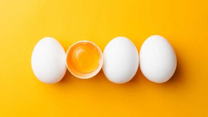 Food for Memory Eggs