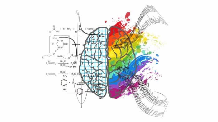 difference between left and right brain