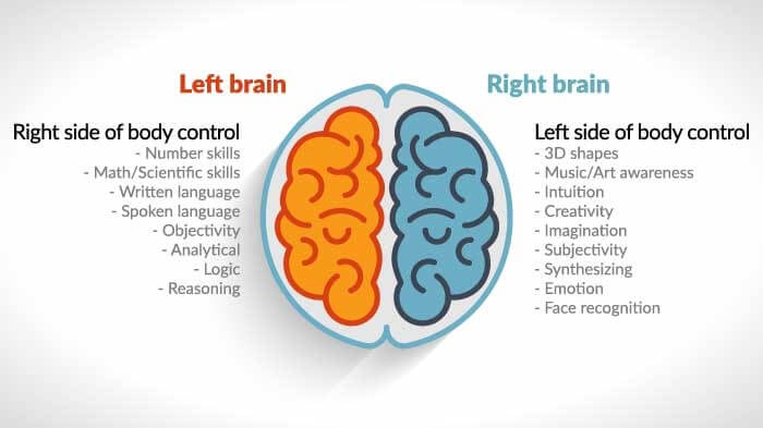 Left brain dominant Right brain dominant