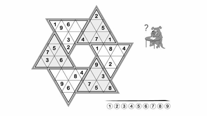 Sudoku Riddles