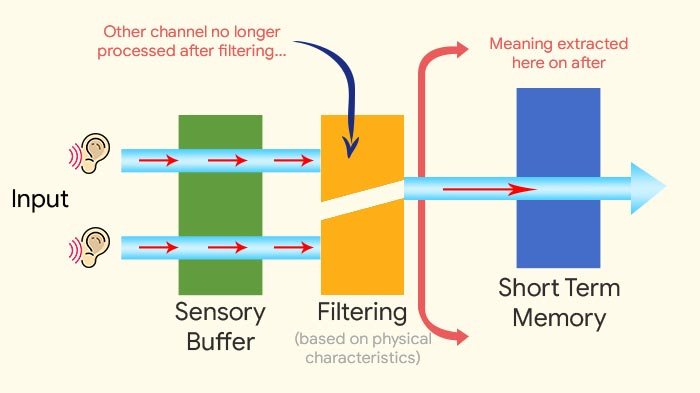 Selective attention theory Broadbent's Filter Model