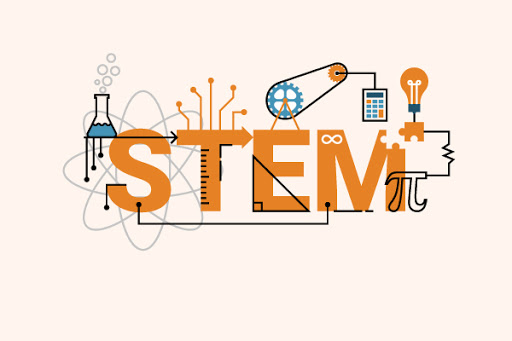 STEM Success Stories