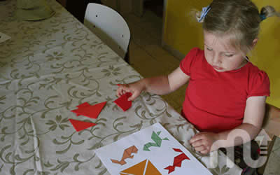 Tangram-educational-toys