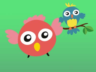 how many birds concentration game